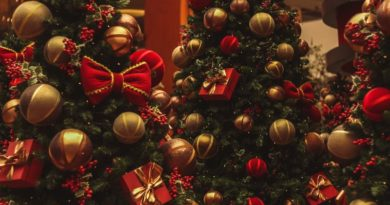 christmas tree with ornaments and decorations and gifts tied to it